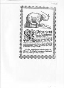 Elephant Hansken Woodcut 1652
