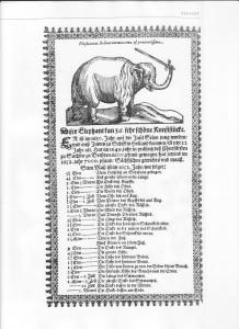 Elephant Hansken broadsheet 1652
