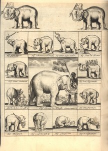 Reclameprent voor een latere olifant, ca. 1690-1700. Leipzich, Stadtgeschichtliches Museum.