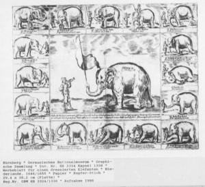 Nuernberg elefant 1-1