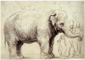 Elephant Hansken British Museum