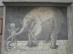 Elephant Hansken Trzebiatów