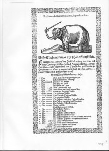 Elephant Hansken German Broadsheet 1651