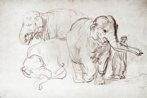 rembrandt-van-rijn-three-elephants-1